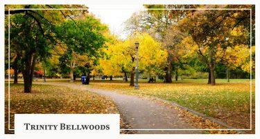 Take a Tour Around Trinity Bellwoods