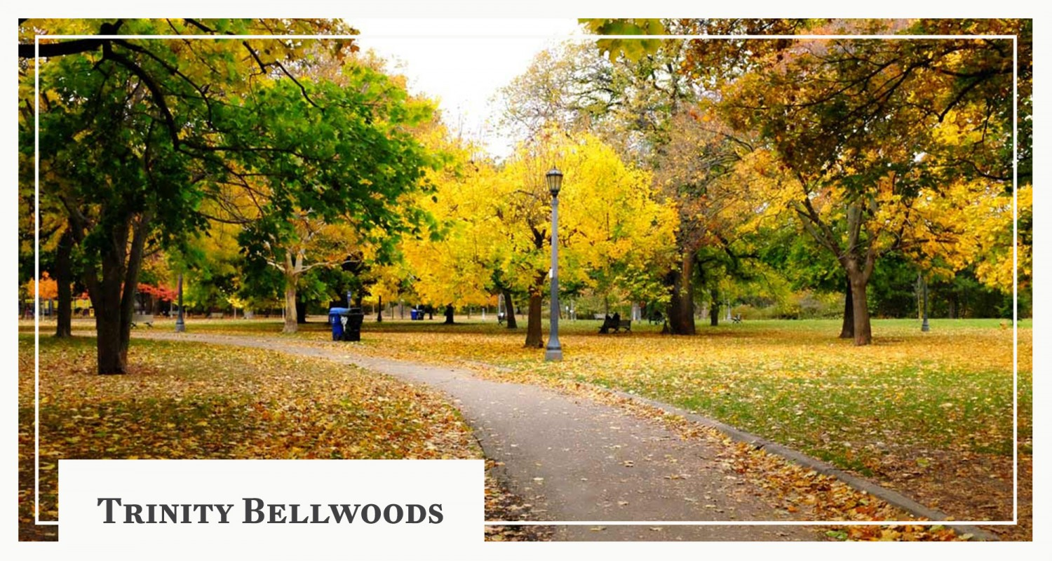 Take a Tour Around Trinity Bellwoods